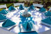Dinner Table Setup — Stock Photo