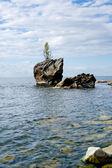 Turtle rock — Stockfoto