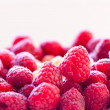Raspberry background - Stock Photo