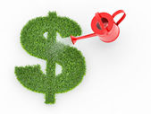 Watering lawns in the form of sign dollar — Stock Photo