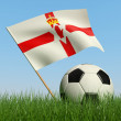 Soccer ball in the grass and flag of Northern Ireland. — Stock Photo