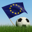 Soccer ball in the grass and flag of European Union. — Stock fotografie