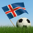 Stock Photo: Soccer ball in the grass and flag of Iceland.