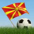 Soccer ball in the grass and flag of Macedonia. — Foto Stock