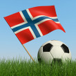 Soccer ball in the grass and flag of Norway. — Photo