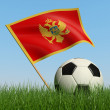 Soccer ball in the grass and flag of Montenegro. — Zdjęcie stockowe