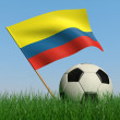 Soccer ball in the grass and the flag of Colombia — Stock Photo