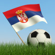 Soccer ball in the grass and flag of Serbia. — Stock Photo