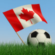 Soccer ball in the grass and the flag of Canada — Stock Photo