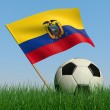 Soccer ball in the grass and the flag of Ecuador — Stock Photo