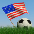 Soccer ball in the grass and the flag of USA — Stock Photo