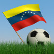 Soccer ball in the grass and the flag of Venezuela — Stock Photo