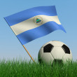 Soccer ball in the grass and the flag of Nicaragua — Stock Photo