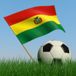 Soccer ball in the grass and the flag of Bolivia — ストック写真