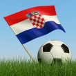 Soccer ball in the grass and flag of Croatia. — Stock Photo