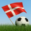 Soccer ball in the grass and flag of Denmark. — Stock Photo