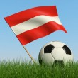 Soccer ball in the grass and flag of Austria. — Stock Photo