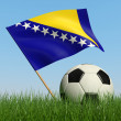 Soccer ball in the grass and flag of Bosnia and Herzegovina. — Stock fotografie