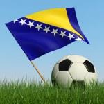 balón de fútbol en el césped y la bandera de bosnia y herzegovina — Foto de Stock