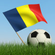 Soccer ball in the grass and flag of Romania. — Stock Photo