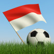 Soccer ball in the grass and flag of Monaco. — ストック写真