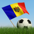 Soccer ball in the grass and flag of Moldova. — Photo