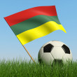 Soccer ball in the grass and flag of Lithuania. — Stock Photo