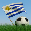 Soccer ball in the grass and the flag of Uruguay — Stock Photo
