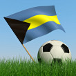 Soccer ball in the grass and the flag of Bahamas — Foto Stock