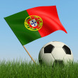 Soccer ball in the grass and flag of Portugal. — Stock Photo