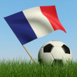 Soccer ball in the grass and flag of France. — Foto Stock