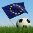 voetbal in het gras en de vlag van de Europese Unie — Stockfoto