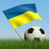Soccer ball in the grass and flag of Ukraine. — Stock Photo