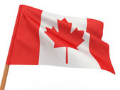 Flag fluttering in the wind. Canada — Stock Photo