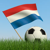 Soccer ball in the grass and flag of Netherlands. — Stock Photo
