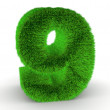 Number nine from grass. 3d — Stock Photo #5069770