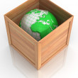 Royalty-Free Stock Photo: Earth in crate