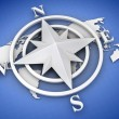 Stock Photo: Rose compass