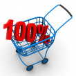 Consumer basket with 100 percent — Stockfoto #5081049