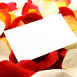 Message on a petals. Background — Stock Photo