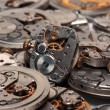 Vintage watch mechanism — Stock Photo #5082564