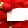 Rose and message on a petals. Background — Stock Photo #5082635