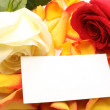 Rose and message on a petals. Background — Stock Photo
