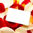 Stock Photo: Message on a petals. Background