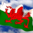 Flag. Wales — Stock Photo