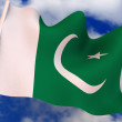 Stock Photo: Flag. pakistan.