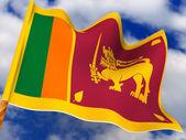 Drapeau. Sri lanka. — Photo