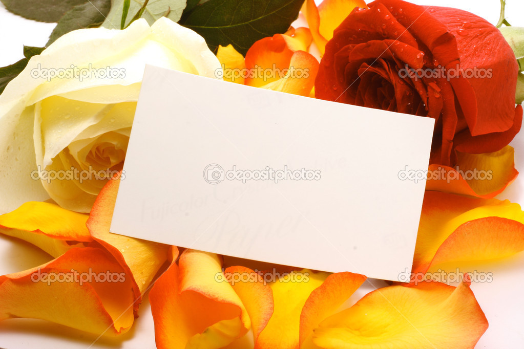 Rose and message on a petals. Background  Stock Photo #5082508
