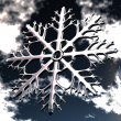 Snowflake — Stock Photo #5094870
