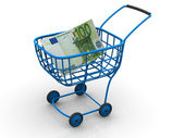 Consumer basket with euro — Stock Photo